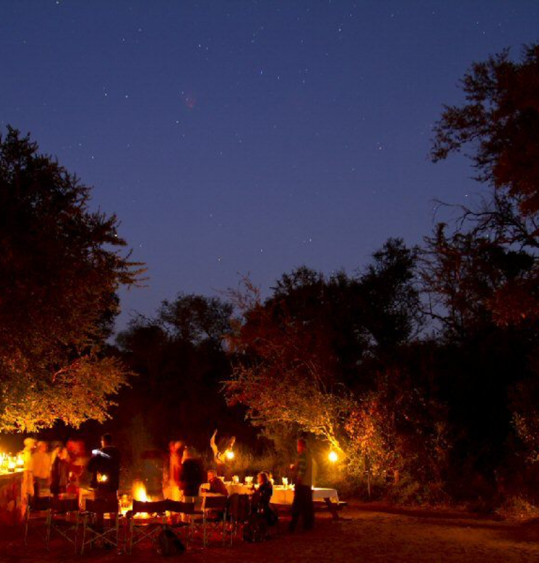 Bush-Camp-by-night-2